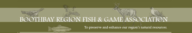 Boothbay Region Fish and Game Association